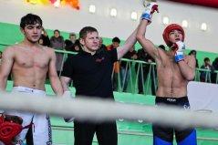В Уфе прошел Чемпионат Республики Башкортостан по смешанному боевому единоборству среди любителей
