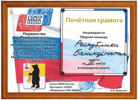 Сборная Республики Башкортостан по смешанному боевому единоборству ММА стала обладателем второго общекомандного места на первенстве Приволжского федерального округа среди юношей 16-17 лет.