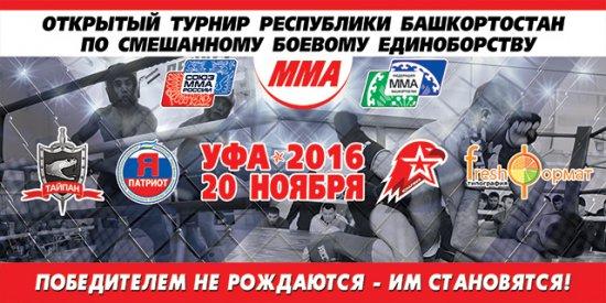 Открытый Турнир Республики Башкортостан по смешанному боевому единоборству (ММА).